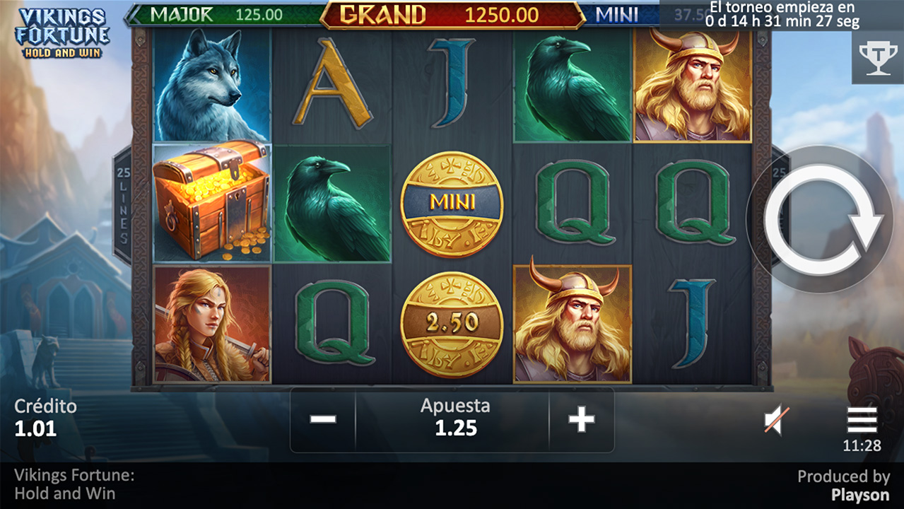 Vikings Fortune: Hold and Win